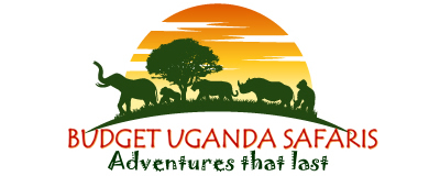Budget Uganda Safaris - Gorilla Tours, Road Trips & Wildlife Safaris in Uganda